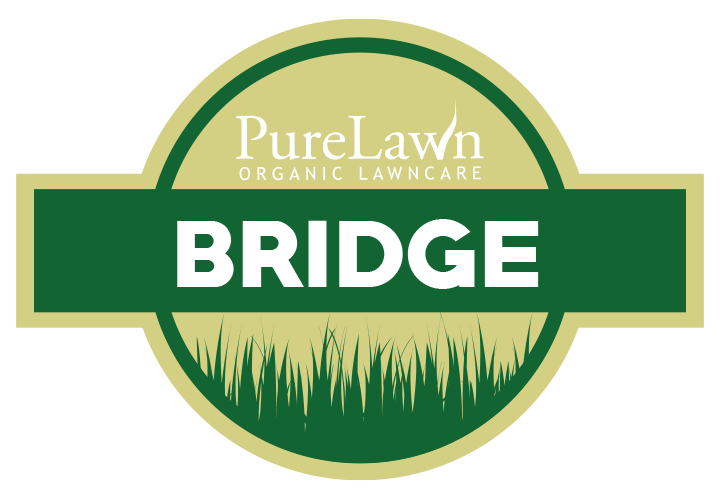 Purelawn Bridge Program