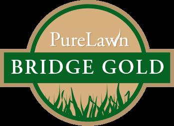 PureLawn Bridge Gold