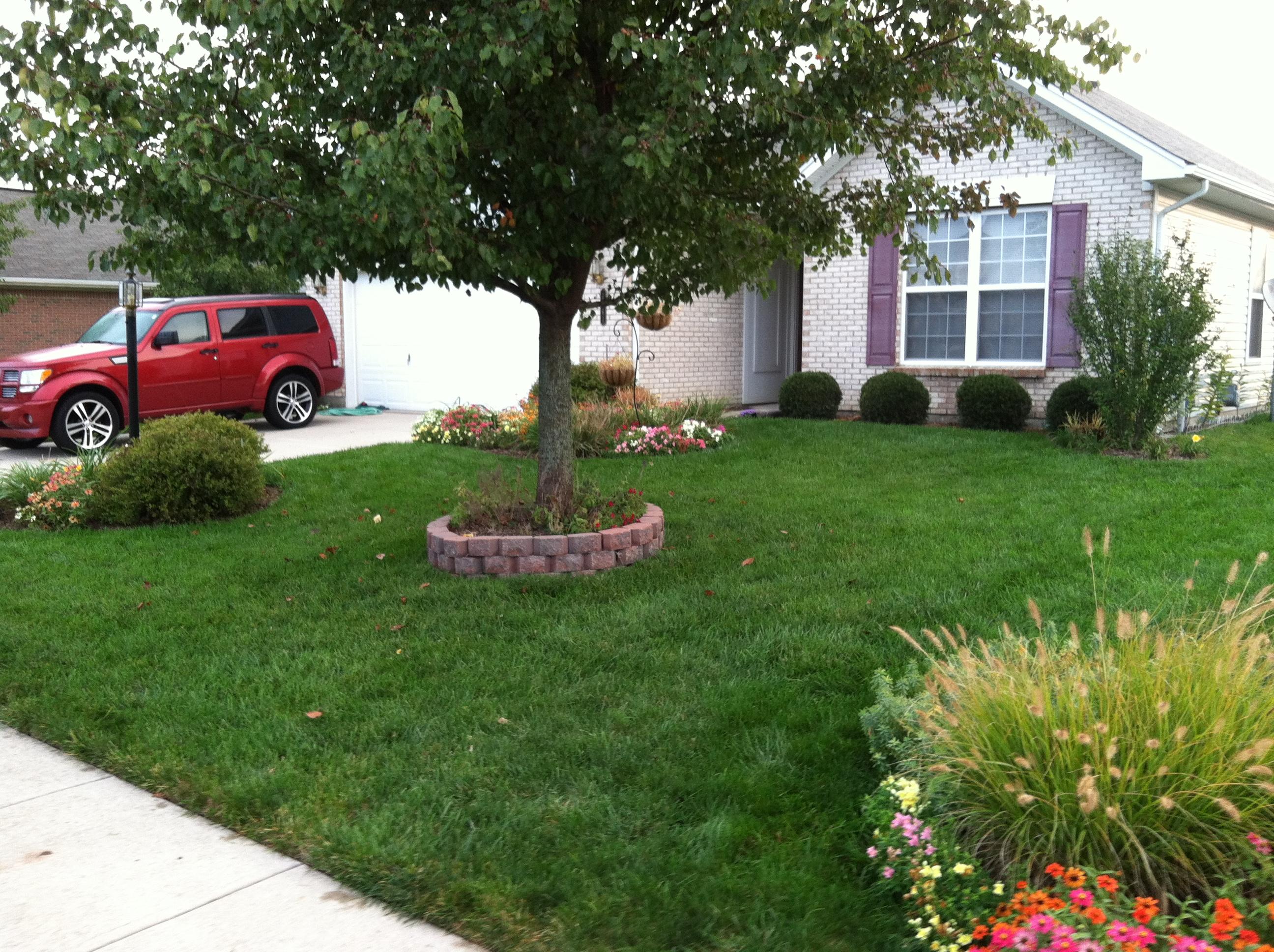 Best Lawn Care Service In Cincinnati Mason Loveland West Chester